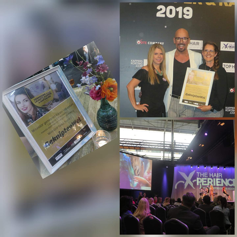 Gold Award GekniptenWel